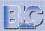 BLC logo 1